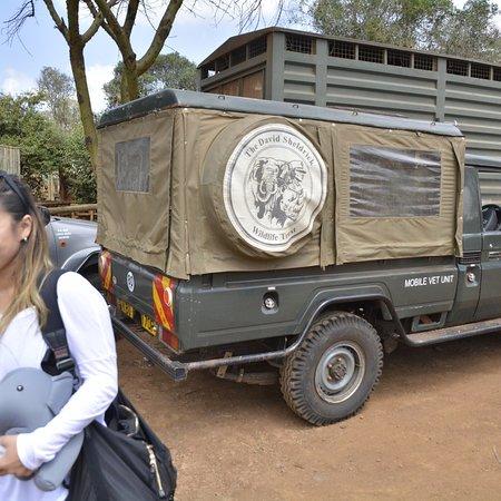 David Sheldrick Wildlife Trust : photo1.jpg