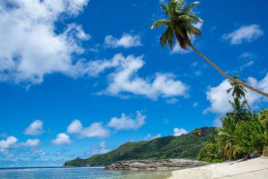Anse Forbans, Seychellene: Optisch ein Highlight