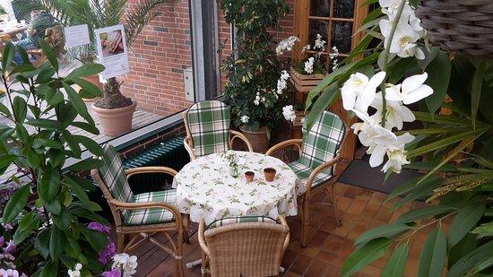 Schenefeld, Germany: Im Wintergarten des orchideen.cafes