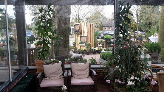 Schenefeld, Niemcy: Chillen im orchideen.cafe