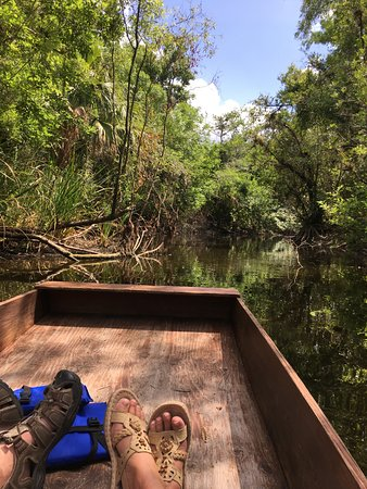 Everglades Adventure Tours: Relaxing ride down the river