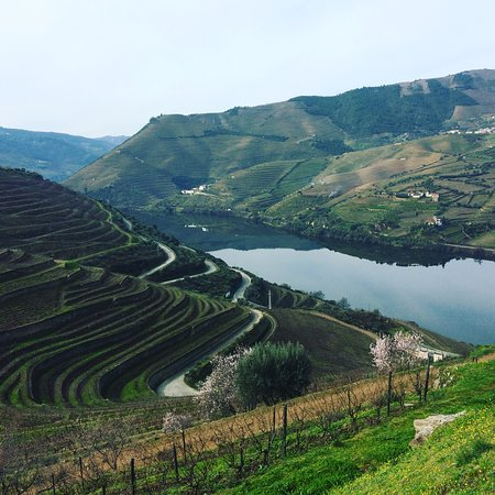 Vila Nova de Gaia, Portugal: Douro Valley