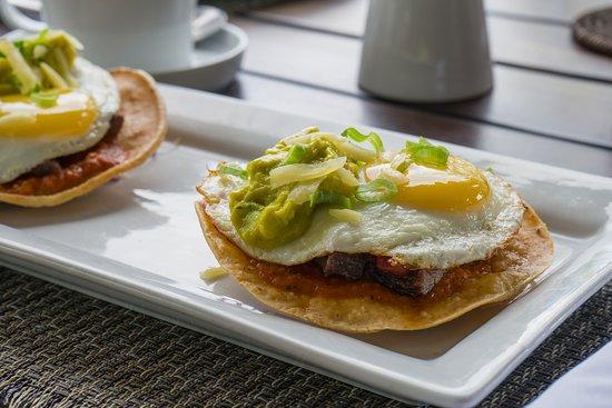 Tola, Nicaragua: Eggs Benedict at La Finca y el Mar