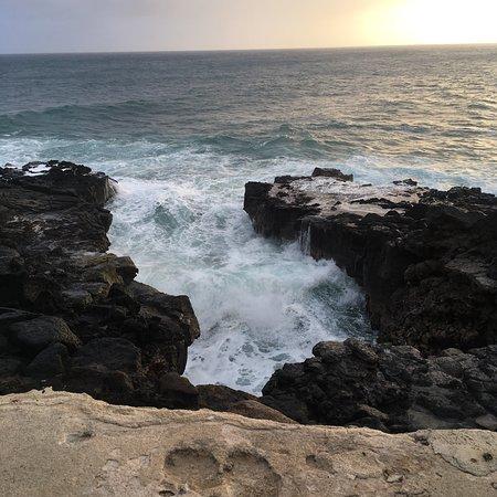 Poipu Shores Resort: photo1.jpg