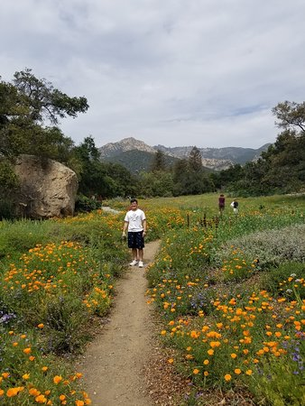 Santa Barbara Botanic Garden: Entrance to natural beauty