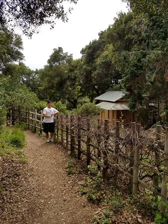 Santa Barbara Botanic Garden: Cute Tea House