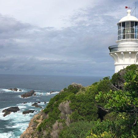 Seal Rocks, Australia: photo4.jpg