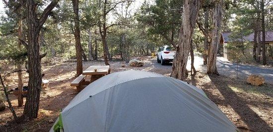 Mather Campground Photo