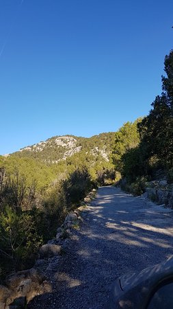 Castell d Alaro: 20180328_091627_large.jpg
