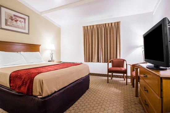 Bordentown, NJ : Guest room