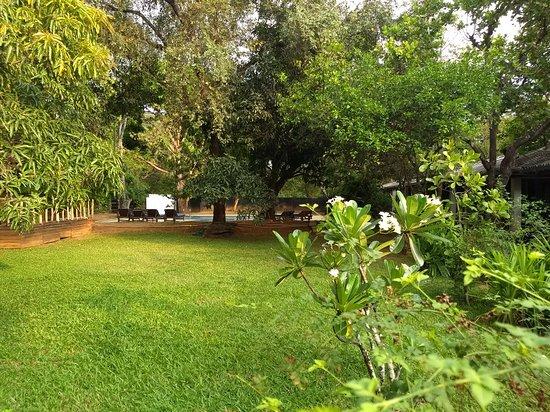 Royal Retreat, Sigiriya: Needs an update. Practically empty of guests.
