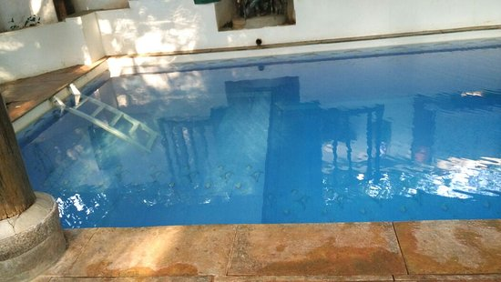 Swimming Pool Inside Guest House Auroville