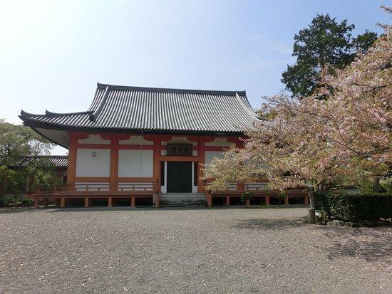 Hidakagawa-cho, Japan: 宝仏殿です 内部には圧倒的な世界が広がります