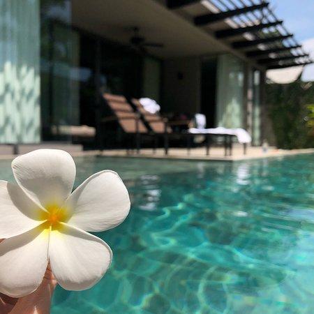 Anantara Vacation Club Mai Khao Phuket: photo0.jpg
