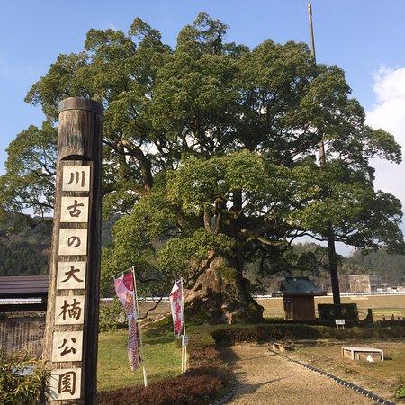 Kawago no Okusu park