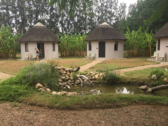 Addo African Home Picture