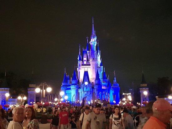 Happily Ever After Fireworks: 20180401_212601_large.jpg