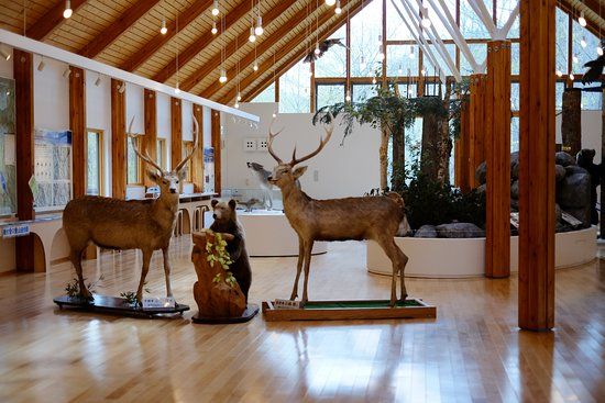 Higashi Taisetu Museum