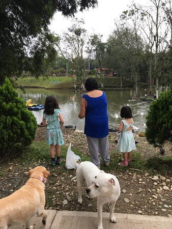 Parque La Pradera: Feeding the ducks