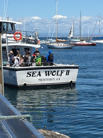 Monterey Bay Whale Watch Tour: Our ride