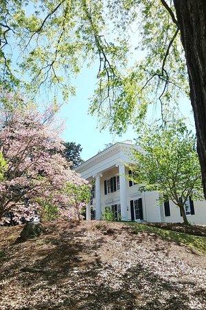 LaGrange, GA: Spring blossoms