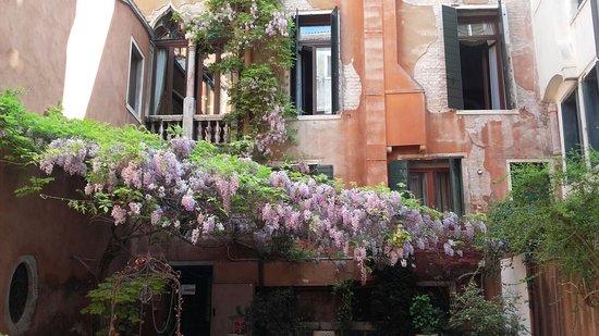 Hotel San Moise: Chiostro con glicine e pozzo bellissimi