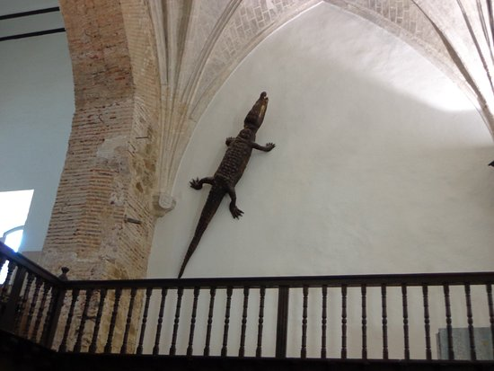 Viso del Marques, Hiszpania: El famoso lagarto