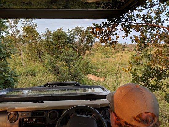 Hoyo-Hoyo Safari Lodge: MVIMG_20180421_170949_large.jpg