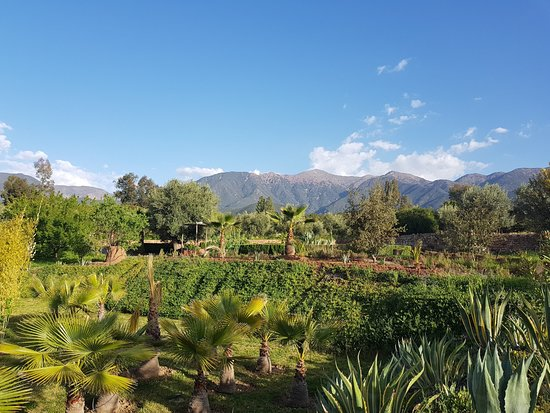 Ouirgane, โมร็อกโก: Garden
