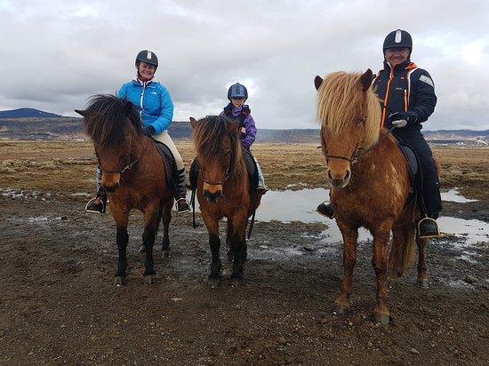 Eldhestar Private Day Tours: Hest er best
