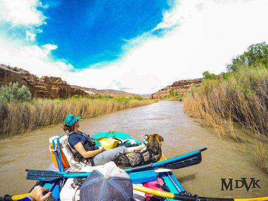 Dvorak Raft, Kayak, Expéditions de pêche : Relaxing day on an overnight float trip