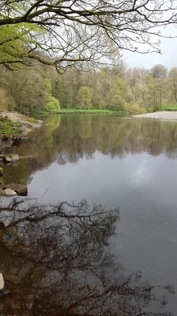 Kirkby Lonsdale, UK: River Lune - pretty reflection of trees
