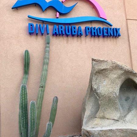 Divi Aruba Phoenix Beach Resort: photo0.jpg
