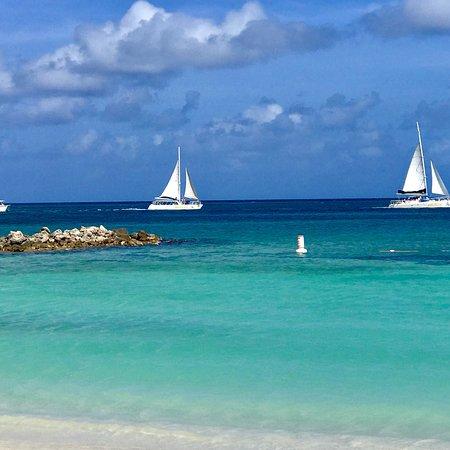 Divi Aruba Phoenix Beach Resort: photo1.jpg