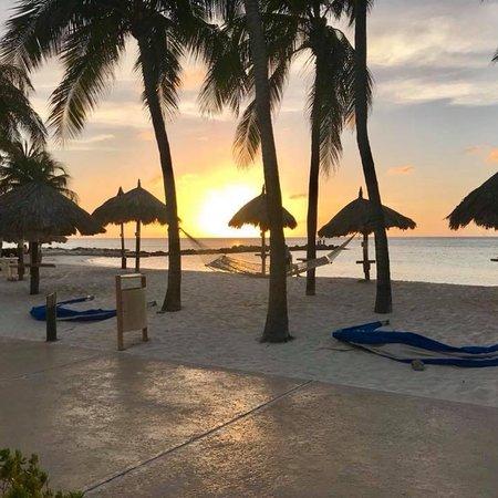 Divi Aruba Phoenix Beach Resort: photo2.jpg