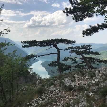 Tara National Park, Serbia: photo2.jpg