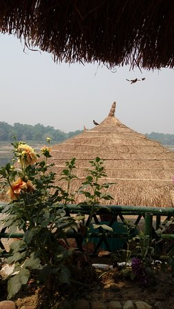 Chitwan District, Nepal: Birds and bar
