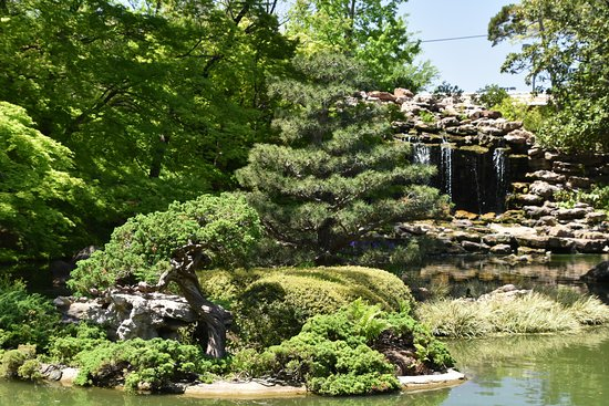 Fort Worth Japanese Gardens - Picture of Fort Worth Japanese Garden ...