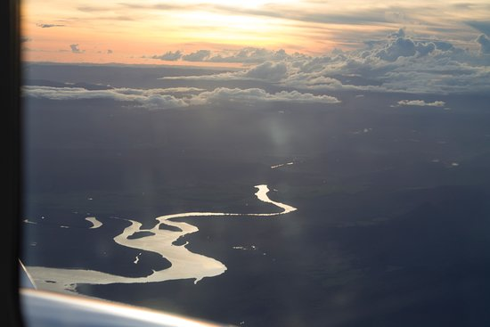 Excursión de un día a Lizard Island en avión desde Cairns: Daintree rain forest
