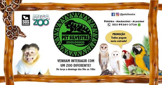 Zoológico Pet Silvestre