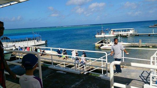 Cocos Island, Mariana Islands: DSC_0321_large.jpg