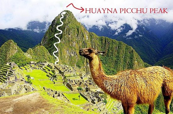 Machu Picchu and Huayna Picchu by Train 2 Days