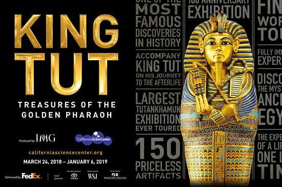 Rey Tut: Tesoros del faraón dorado en...