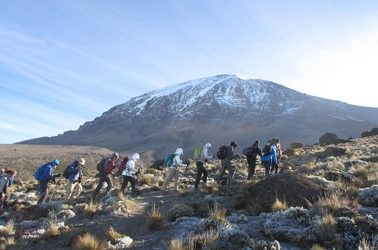 The Kilimanjaro Machame Trek