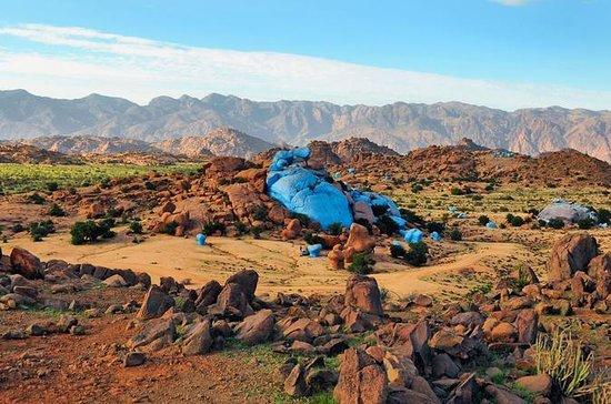 Escursione da Agadir a Tafraout