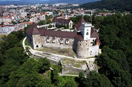Private Tour from Trieste: Ljubljana...