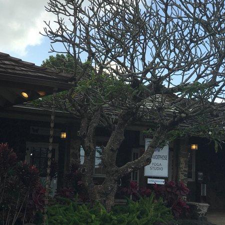 Kilauea, ฮาวาย: Metamorphose Yoga Studio