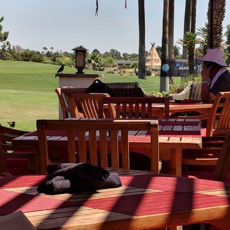 Litchfield Park, AZ : Golf course view