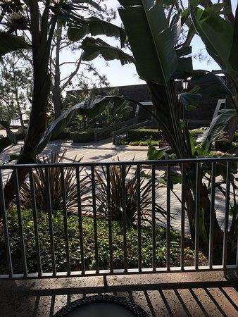 Del Mar, كاليفورنيا: Outside on patio