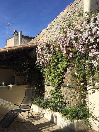 Rieux Minervois, ฝรั่งเศส: Notre Patio en printemps